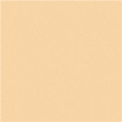 ROSCO CINELUX 08 Pale Gold - RO.00345