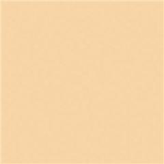 ROSCO CINELUX 08 Pale Gold - RO.00345