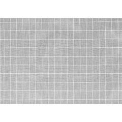 PALIO 3034 1/4 Grid Cloth
