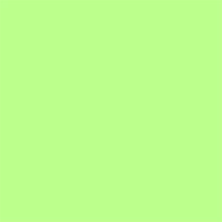 E-COLOUR+088 LIME GREEN 1.22x0.53m - RO.00585