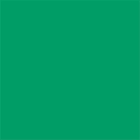 E-COLOUR+089 MOSS GREEN 1.22x0.53m - RO.00586